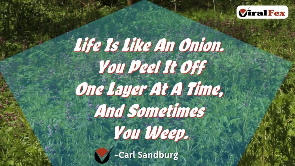Life Is Like An Onion- Carl Sandburg Video Quote
