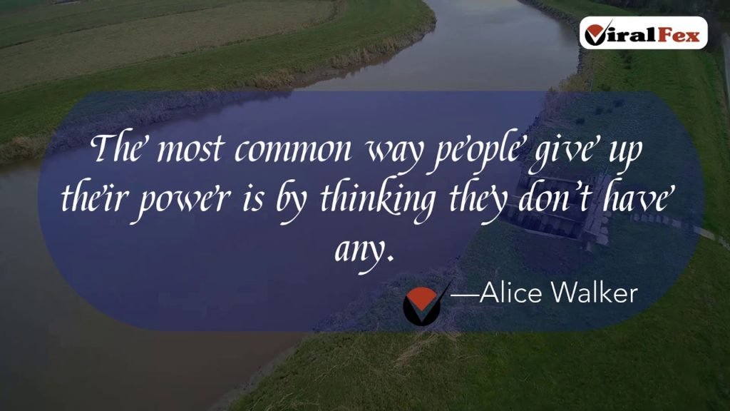The Most Common Way People Give Up Their Power - Alice Walker Inspirational Quote